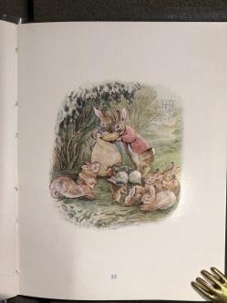 La famosa famiglia di coniglietto della Potter