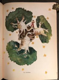 """i famosi """"Baobab"""" del Piccolo Principe"""